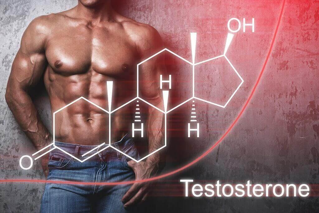 Cara Mudah Untuk Meningkatkan Testosteron Yang Aman Dan Efektif